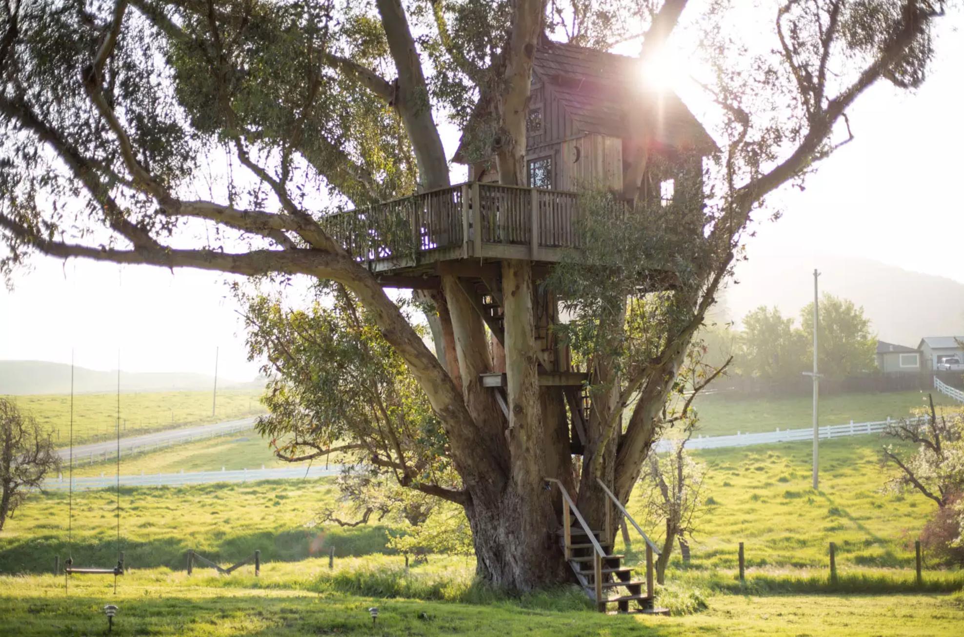 more-treehouse-yurt
