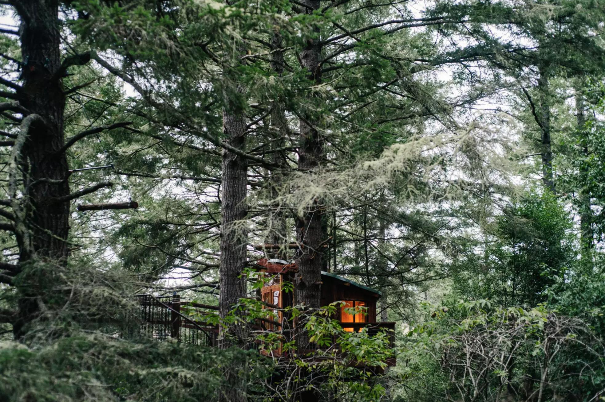 Eagle's Nest Treehouse Farmstay, photo via Hipcamp