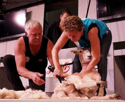 French Ambassador Shears