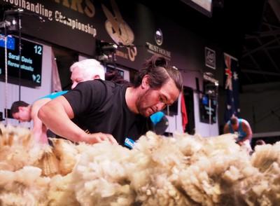 Ricci Stevens woolhandler