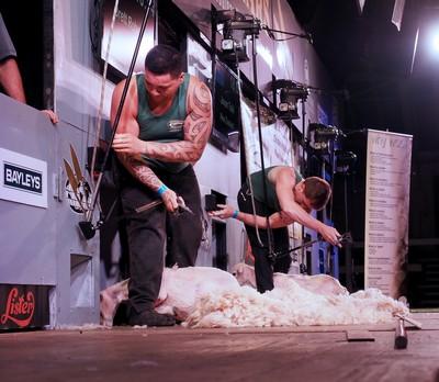 Speed Shear