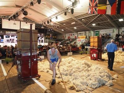 wool pressing day 1.jpg