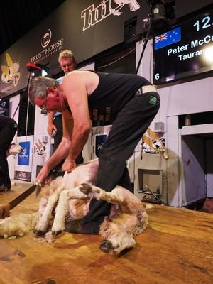 Peter McCabe winner vets 02.jpg
