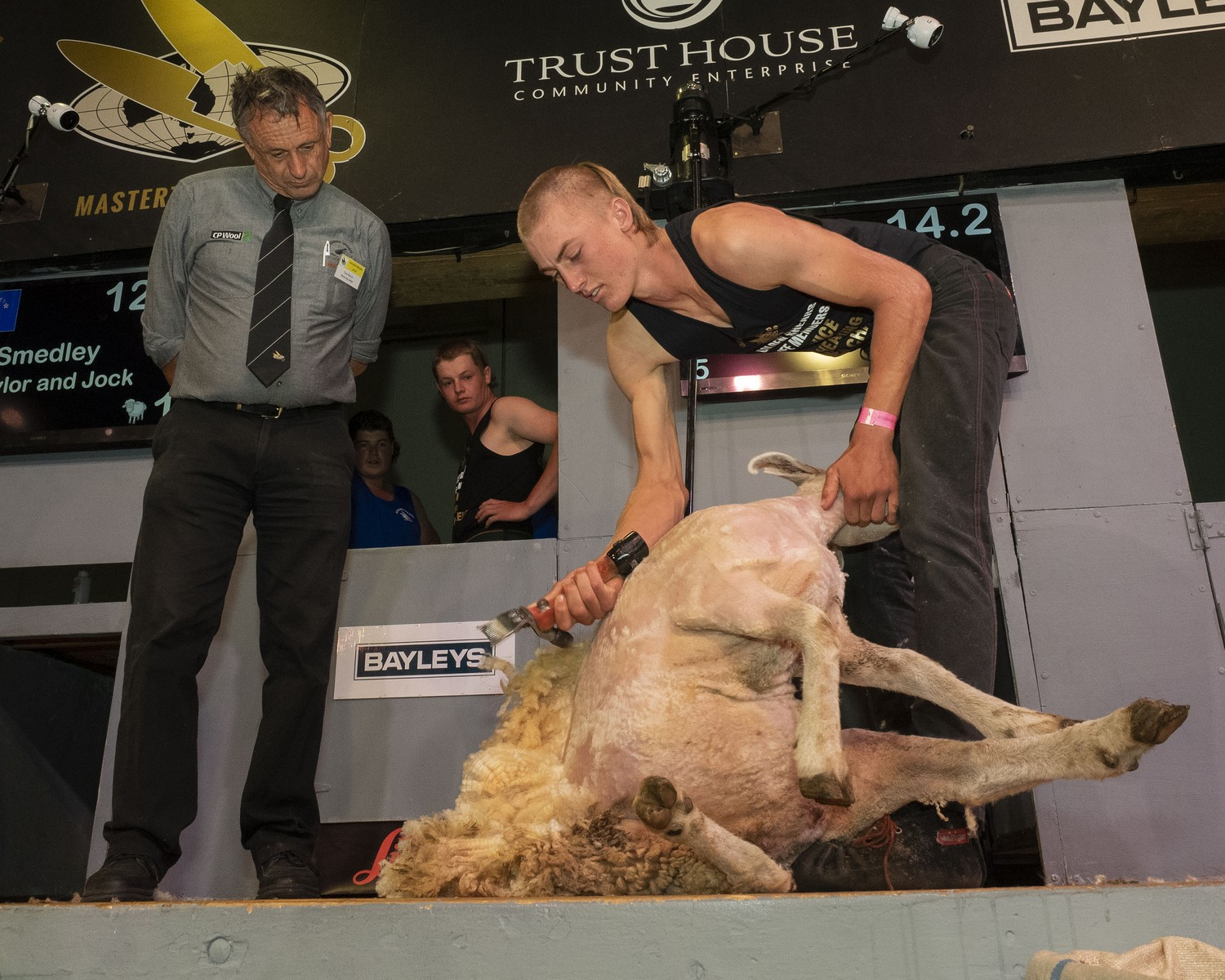 Jeese McIntyre, of Hastings, shearing to Pukemiro Station's win in the students challenge among teams from four agricultural training courses.