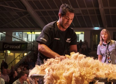 Joel Henare in his Transtasman woolhandling swansong at the Golden Shears in Masterton last night, win No 13 out of his 14 tests since 2008.  PHOTO/Pete Nikolaison, Golden Shears.