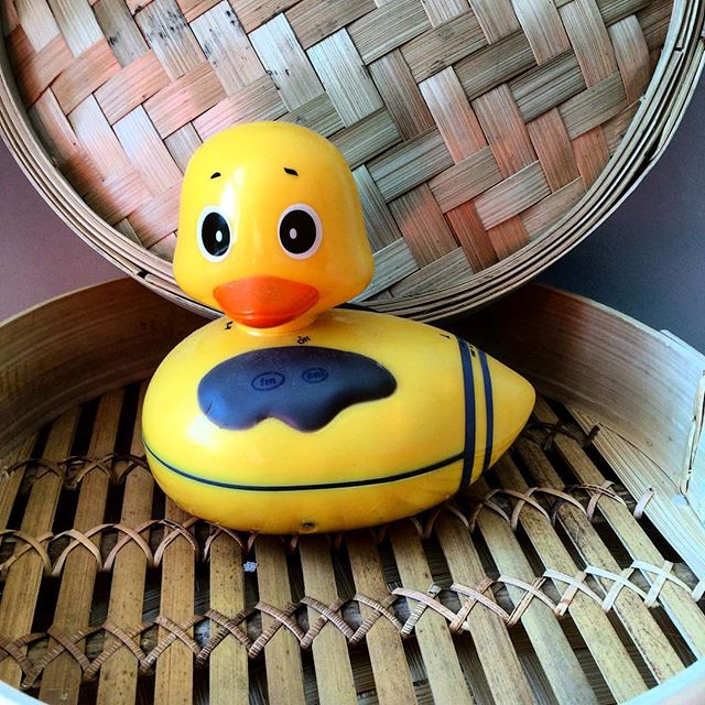 The elusive Mock Duck has been sighted @ #barnesfarmersmarket & #chiswickfarmersmarket. Come see what the commotion is all about.