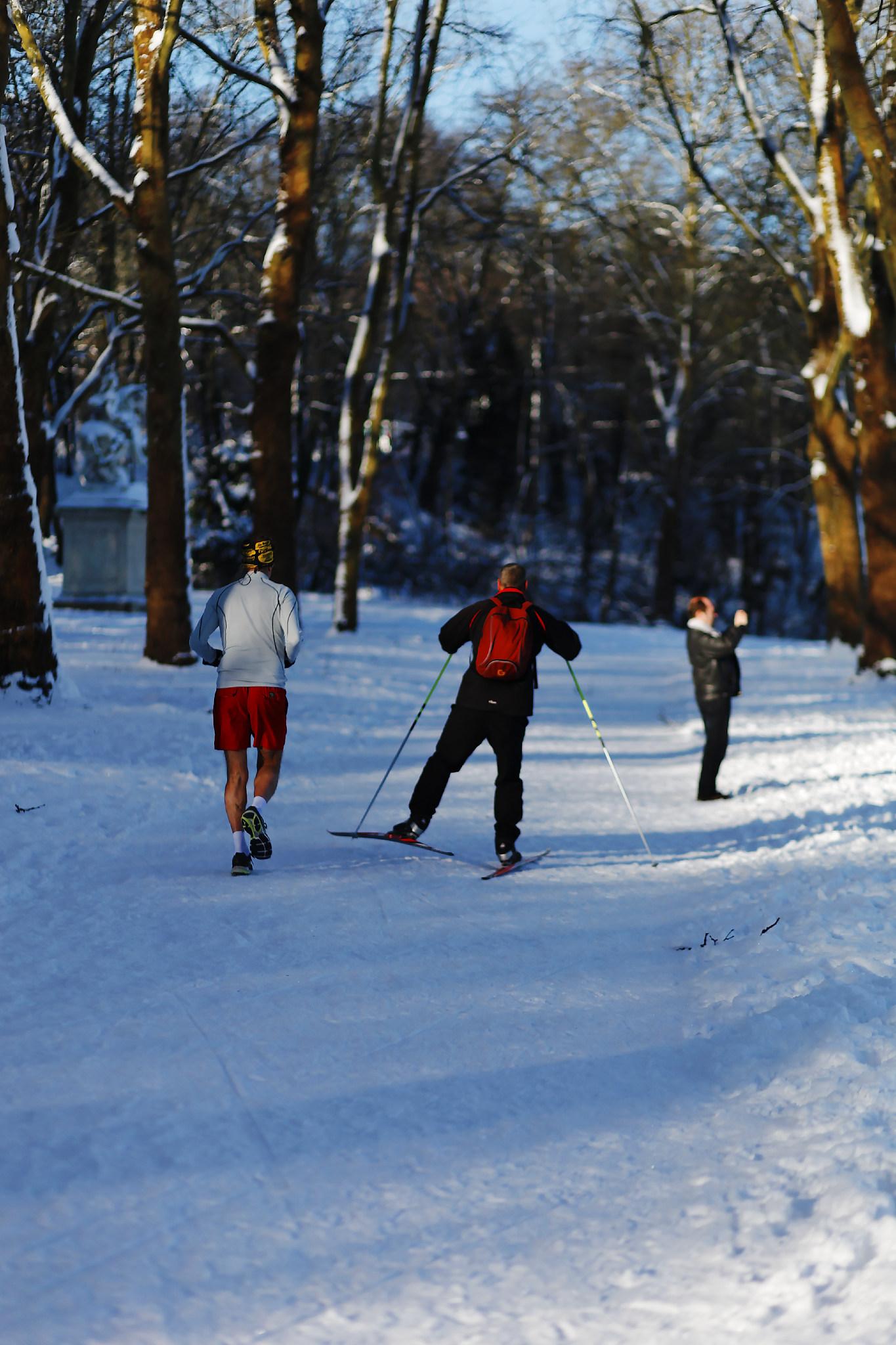 VERSAILLES SNOW LES INDISPENSABLES PARIS (1).jpg