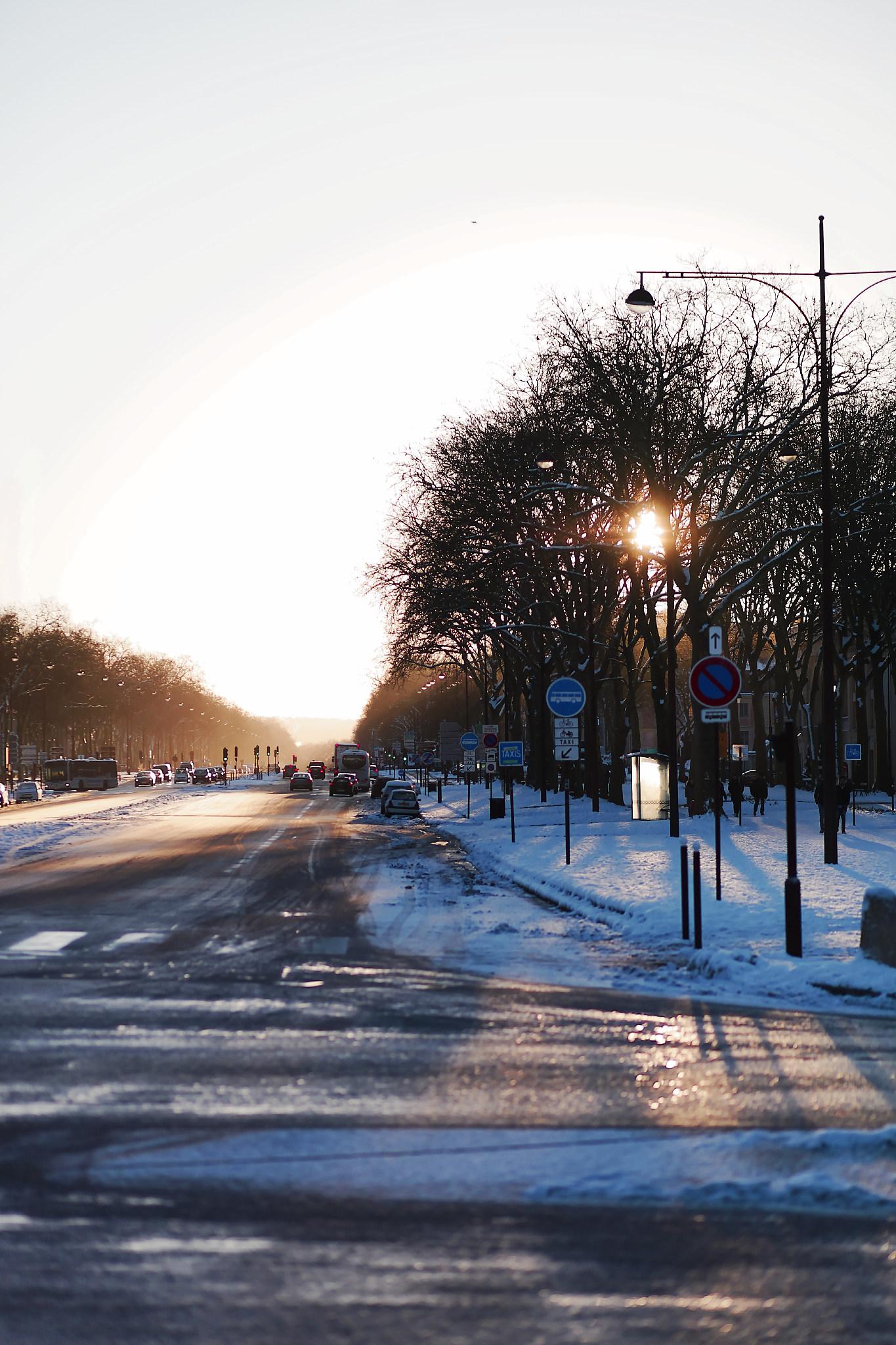 VERSAILLES SNOW LES INDISPENSABLES PARIS (16).jpg