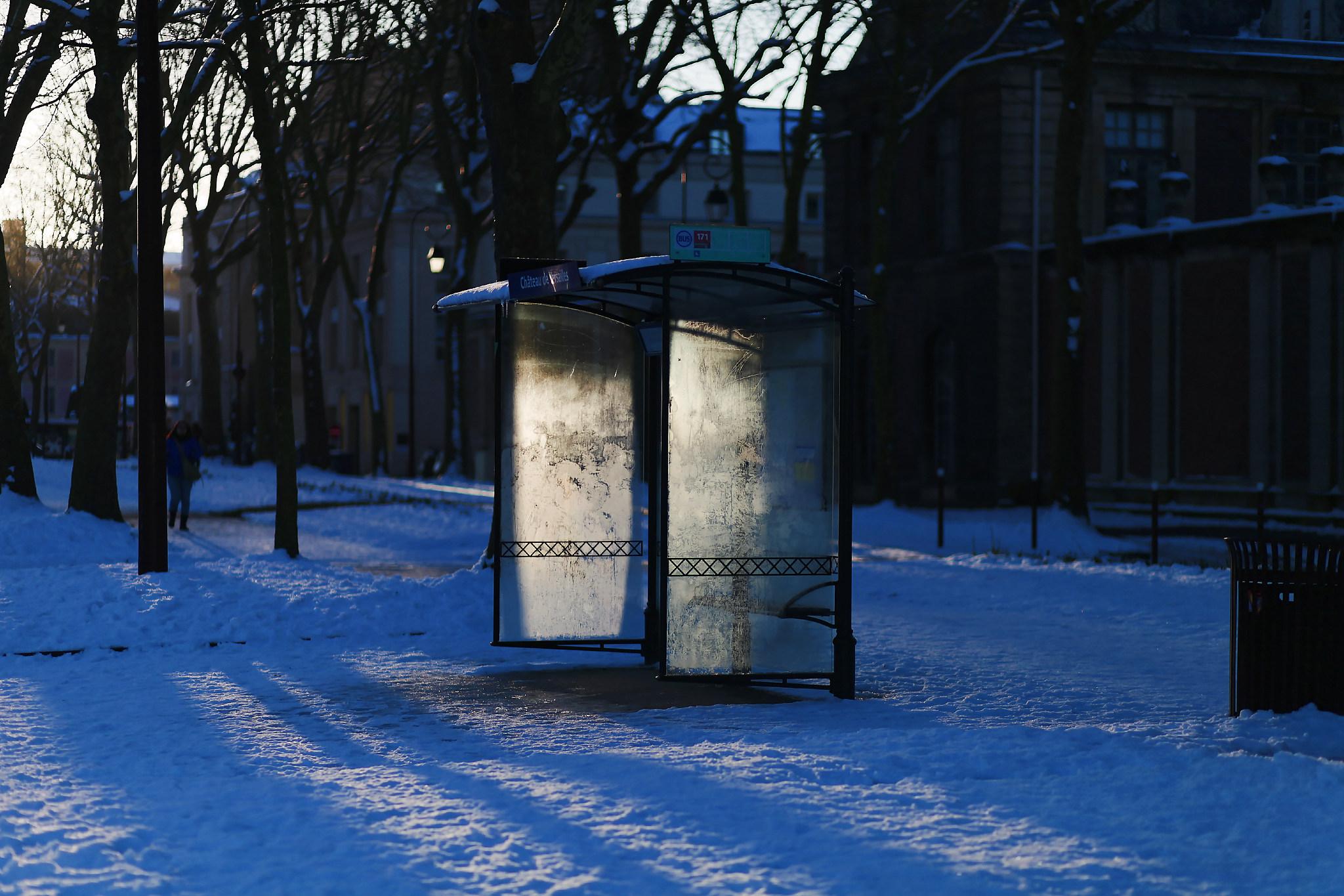 VERSAILLES SNOW LES INDISPENSABLES PARIS (18).jpg