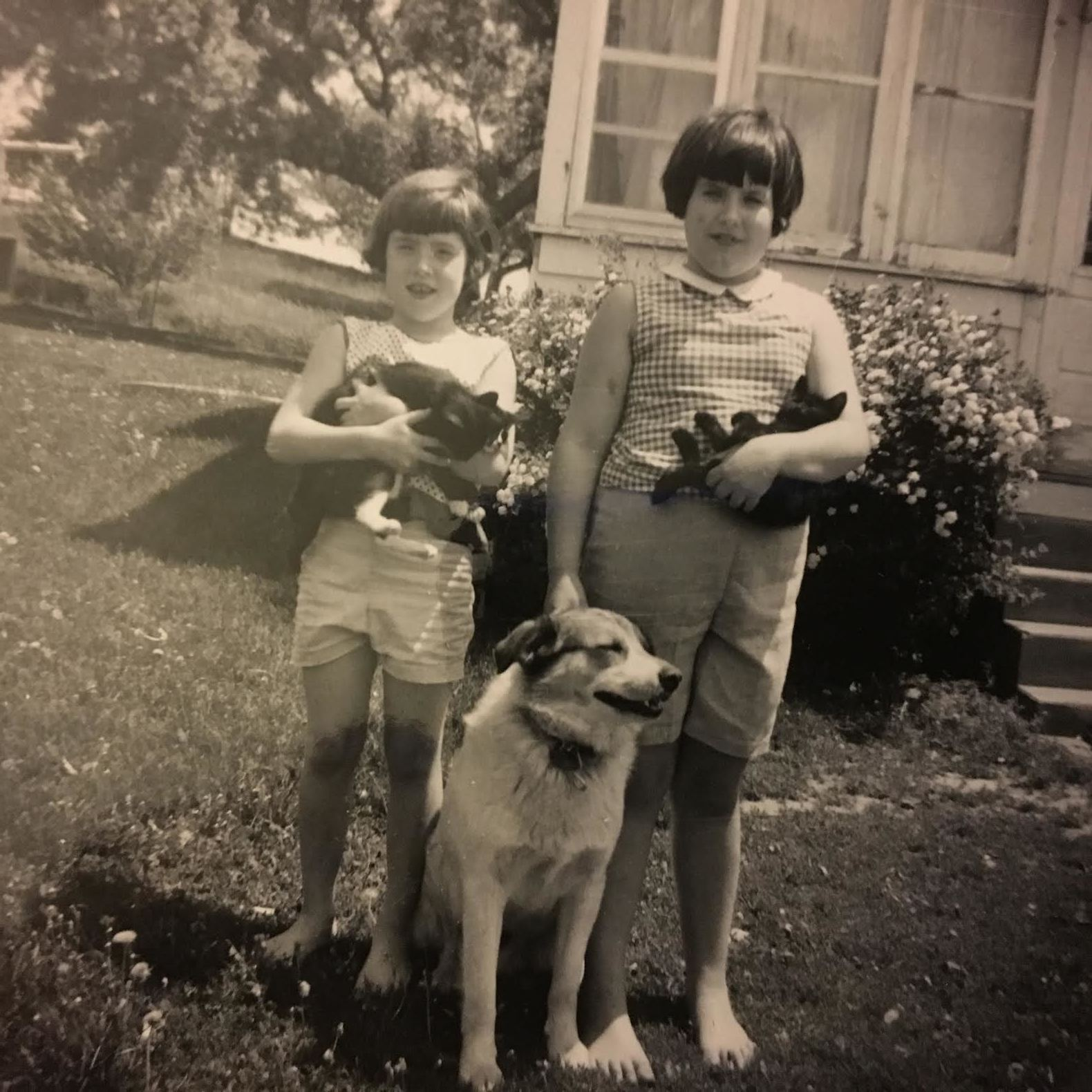 """My sister, Paula, and I at our little farm in Sioux City, Iowa, probably when I was in first grade. That's Spot, our beloved dog, at our feet, but I can't remember the barn cats names. And yes, I was just a year older than PK, despite that size difference. Or as one of my friends once said, """"You were so large! Didn't someone call Social Services?"""""""