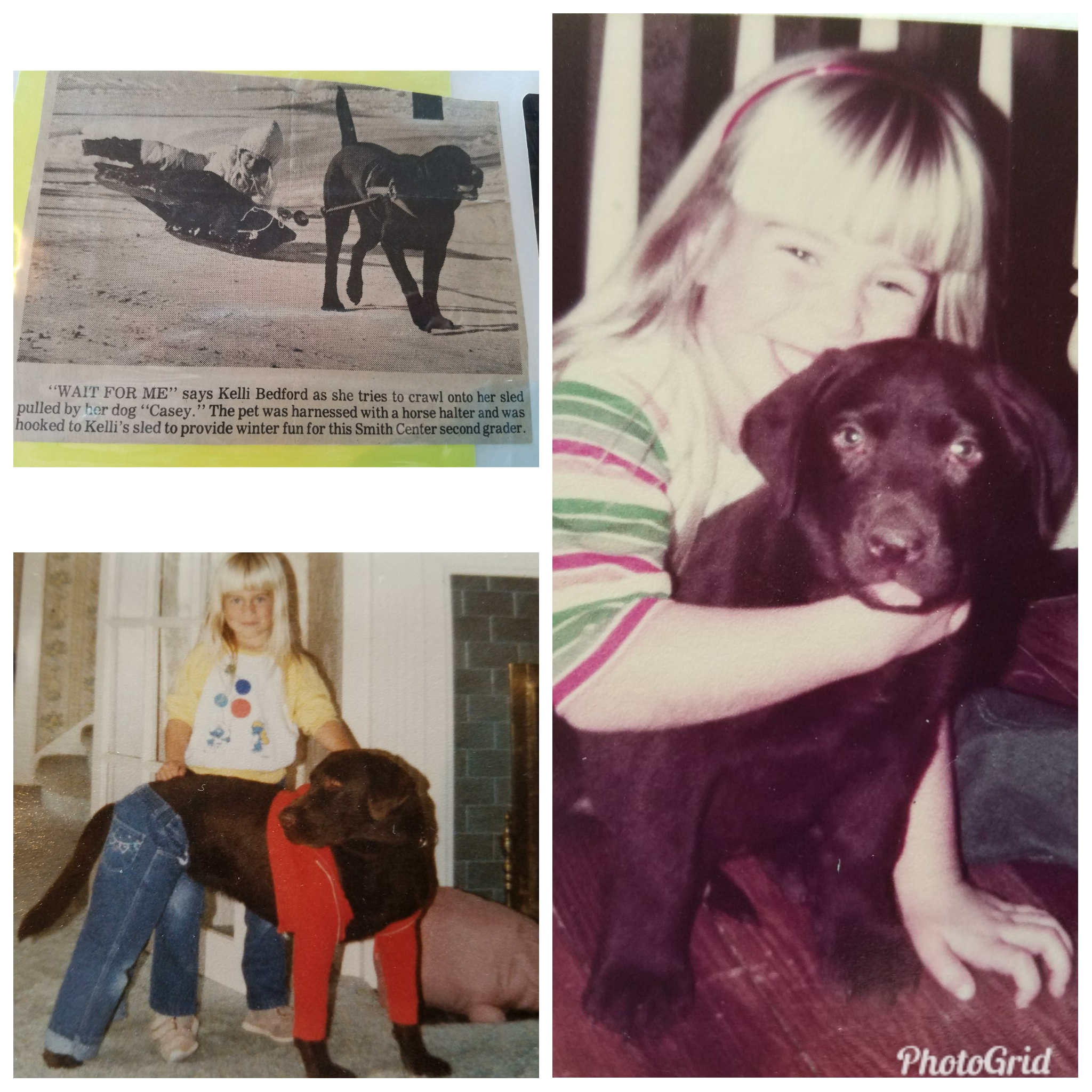 "In 1984 my dad bought me my firs love, ""Casey."" Casey was a beautiful chocolate Lab. He was my best friend, went everywhere with me, and my childhood friends all, to this day, remember him. We breed quality Labrador's (Golden's and Doodles) with the idea in mind that each pup could be some little girl's (or boys) best friend."