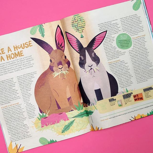 🐰 A recent illustration for @petsathomeuk My VIP magazine. The article was all about rabbits and how to properly care for them.  A big thanks to Joe at @nb.illustration . . .  #rabbit #bunny #pets #leaves #animals #wildlife #illustration #illustrator #texture #digitalart #design #creative #magazine #editorialillustration #photoshop #editorial #petsathome #rabbitstagram #rabbitsofinstagram #rabbit