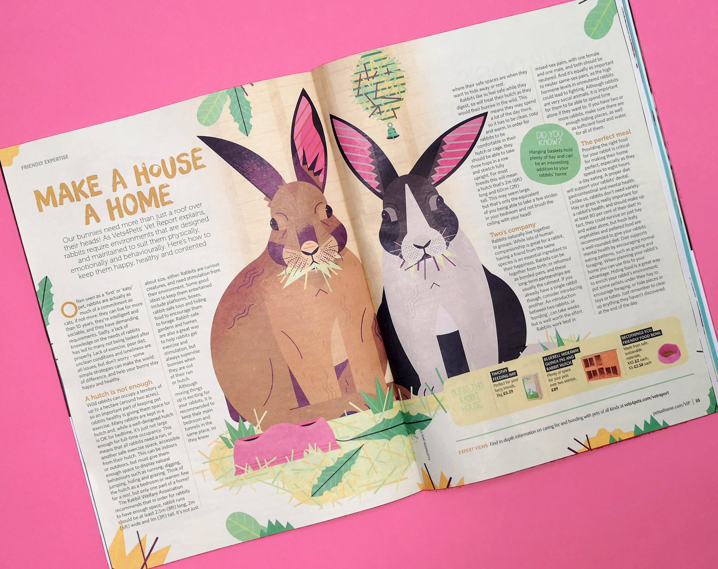 Rabbit editorial illustration