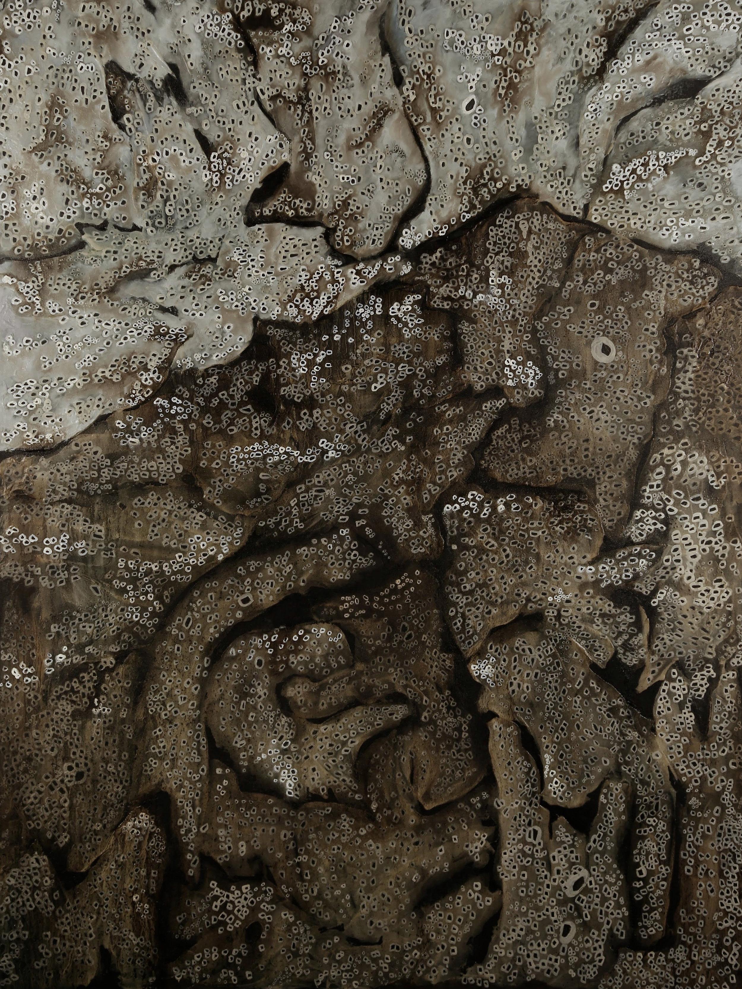 Horror Vacui, 2050 CE (II)
