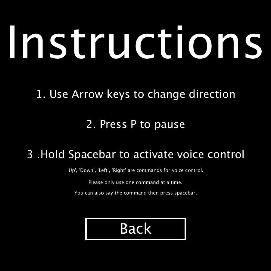 Snake Instructions