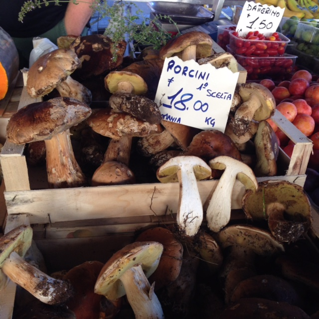 Fresh porcini at the Sant'Ambrogio market.