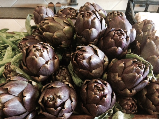 Artichokes for the lasagna