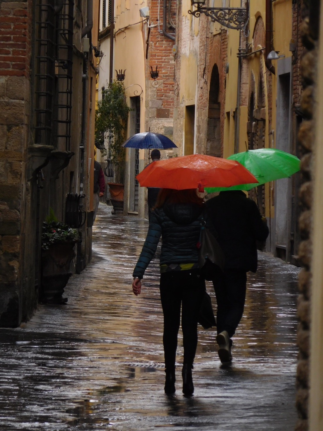 Rainy days bring out lots of color as umbrellas brighten the dark skies.