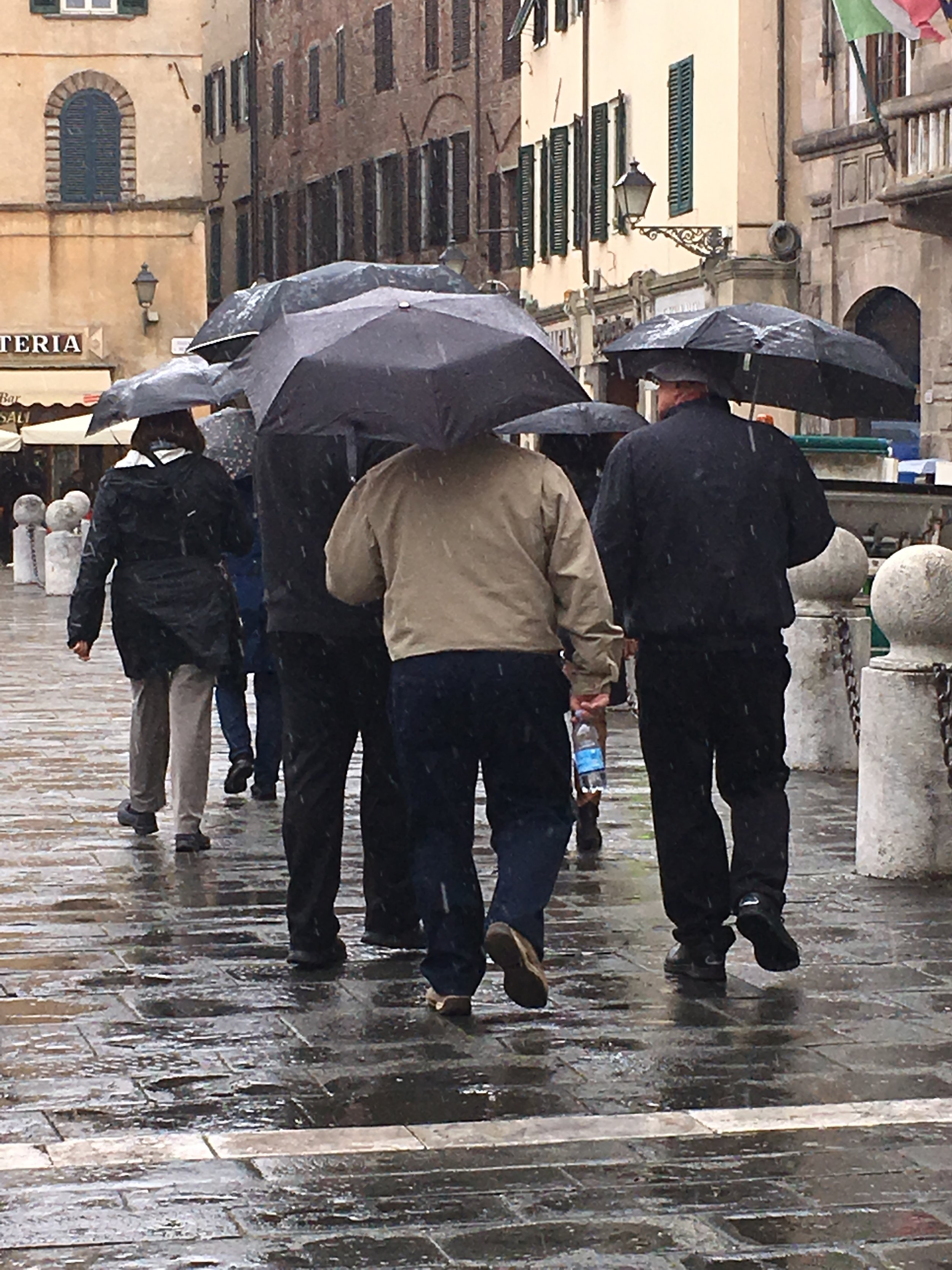 A group of tourists out and about despite the rain.