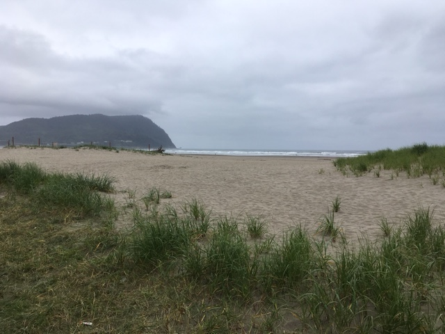 Sand dunes and beach, Seaside, Oregon