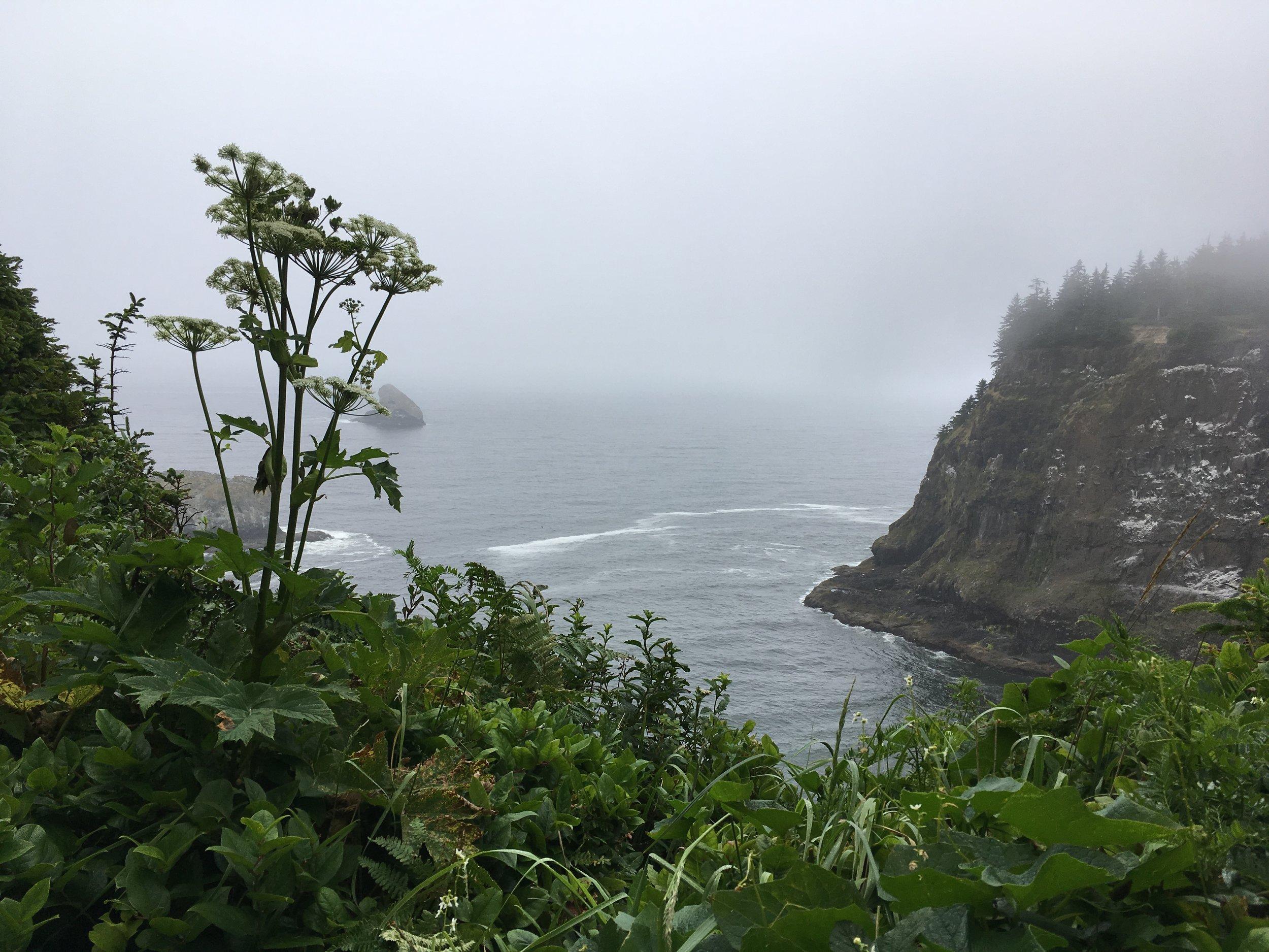 The dramatic Oregon coast.