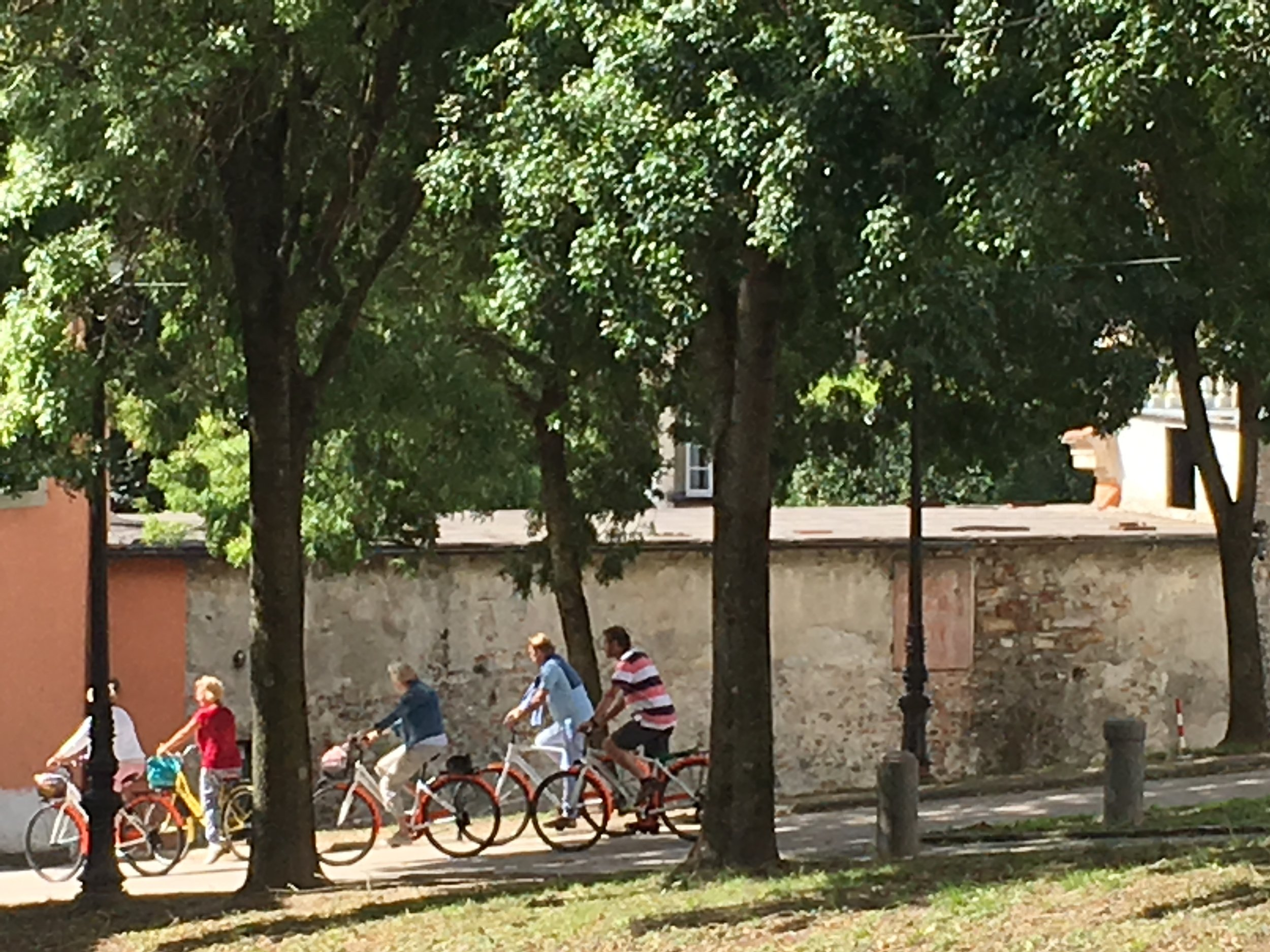 Biking the wall is a popular activity in Lucca.