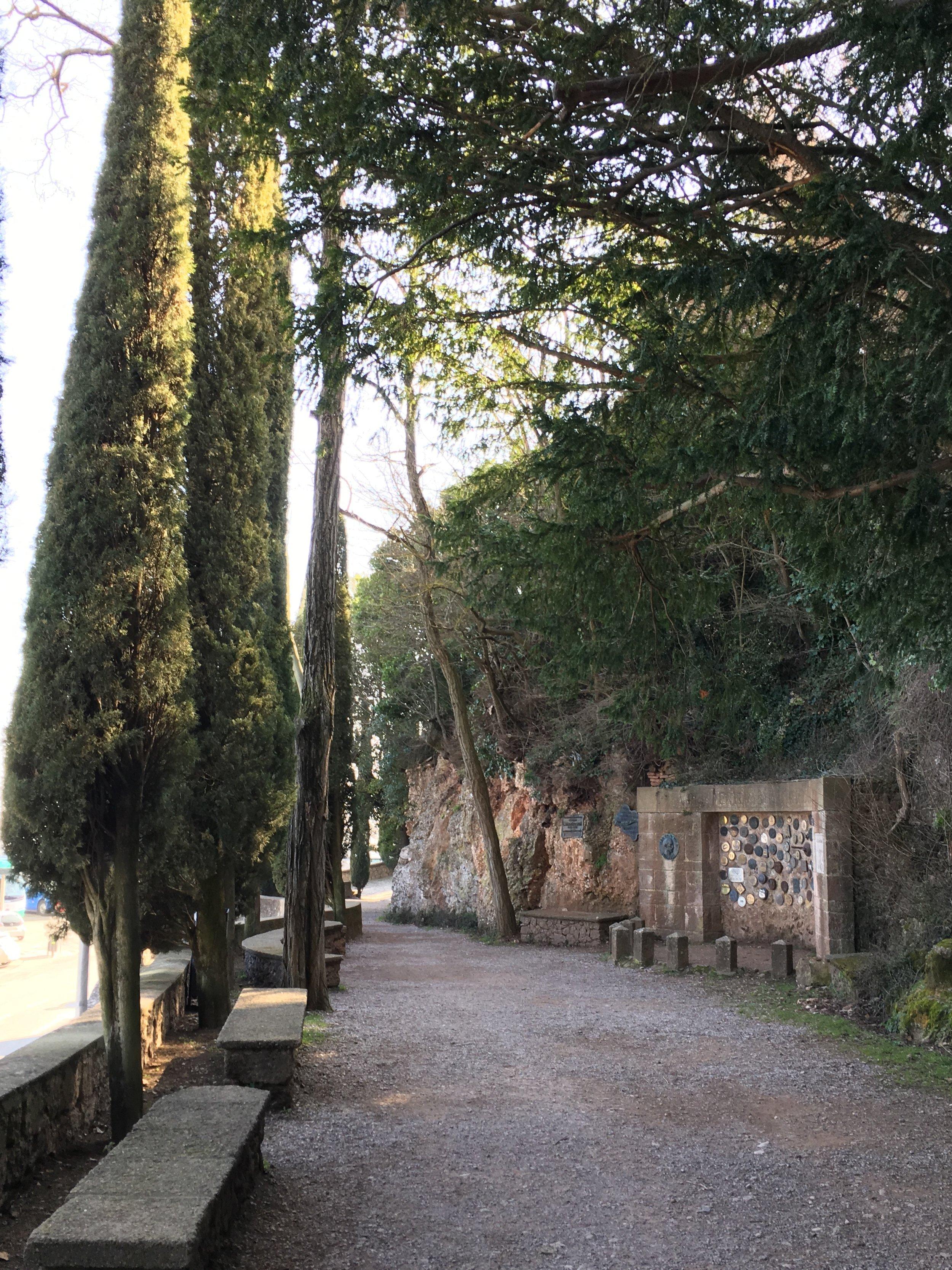 The Abbey's garden path