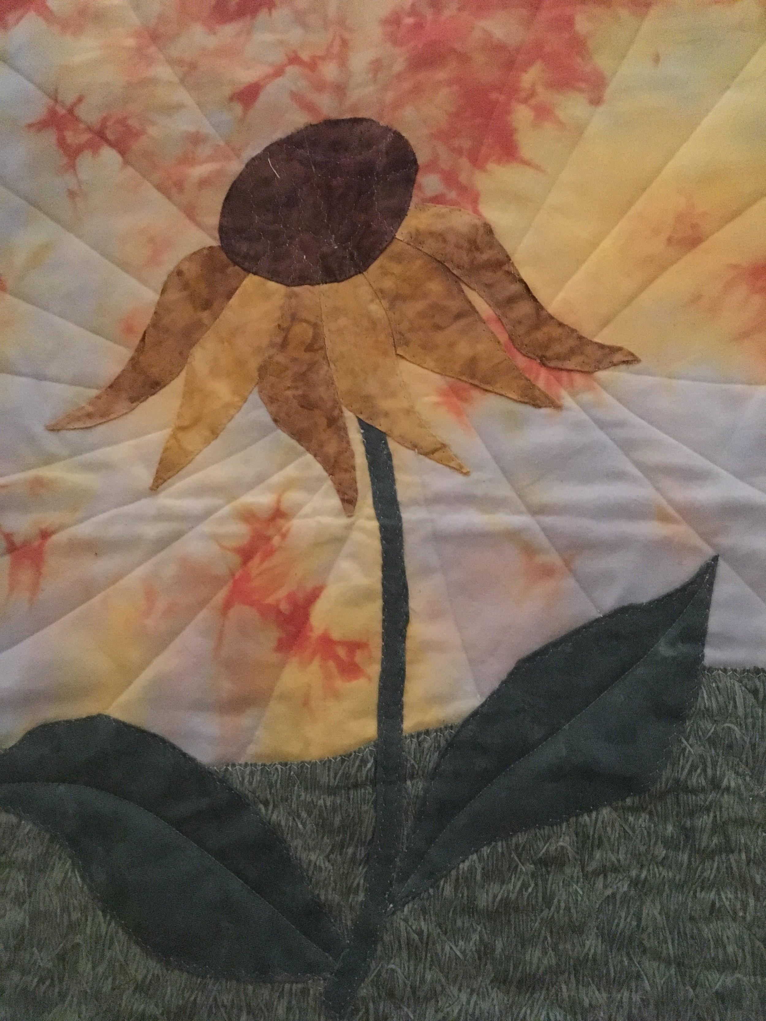Echinacean Sunrise by Hazel McCullagh