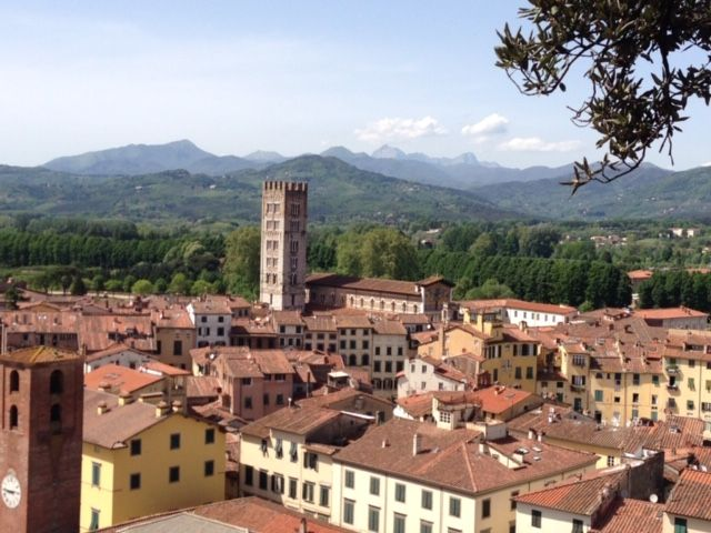 The rooftops of Lucca, and the hills beyond, as seen from atop the Torre Guinigi. I can hardly believe I will be living here!