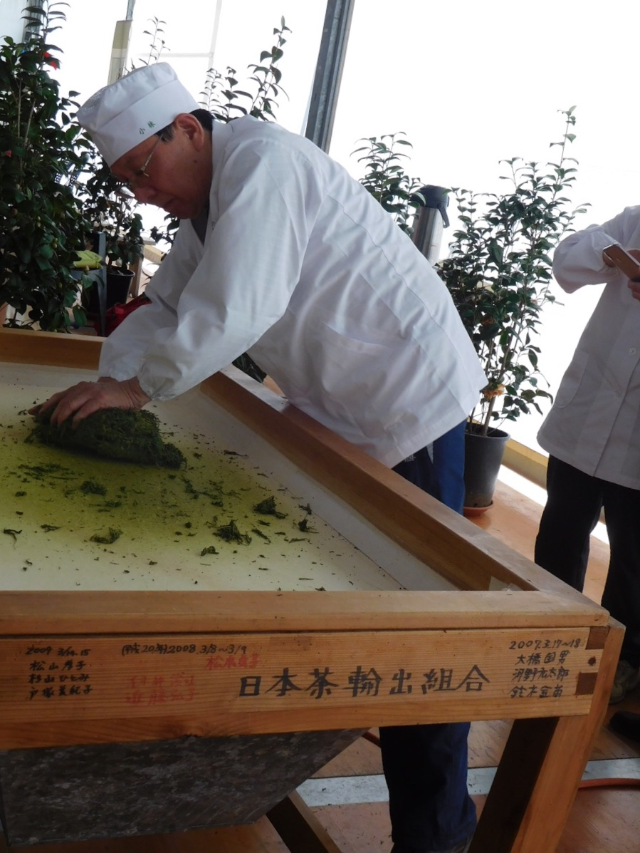 Processing the newly harvested tea leaves the old-fashioned way - kneading over a cloth-covered surface heated from below