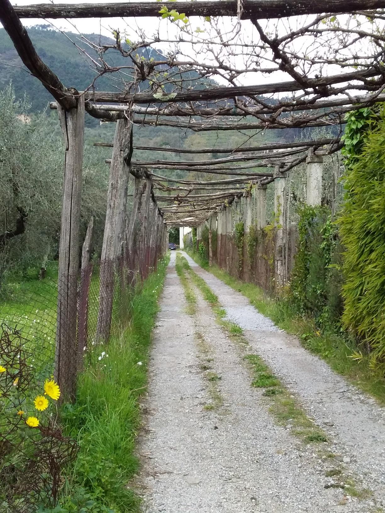 Vorno, Italy