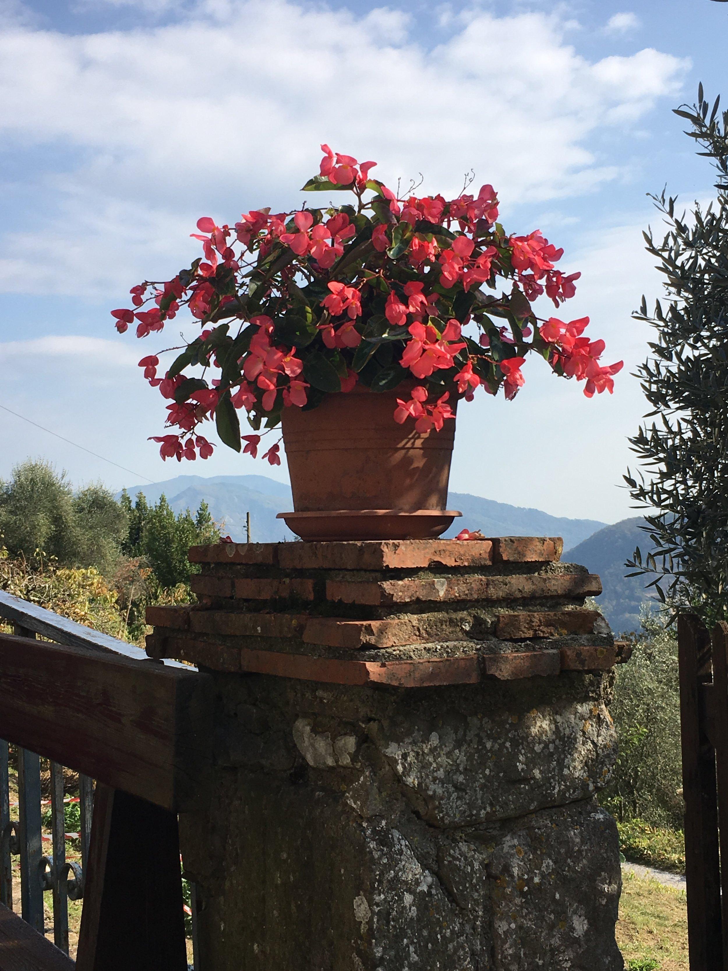 Colognora di Pescaglia, Tuscany