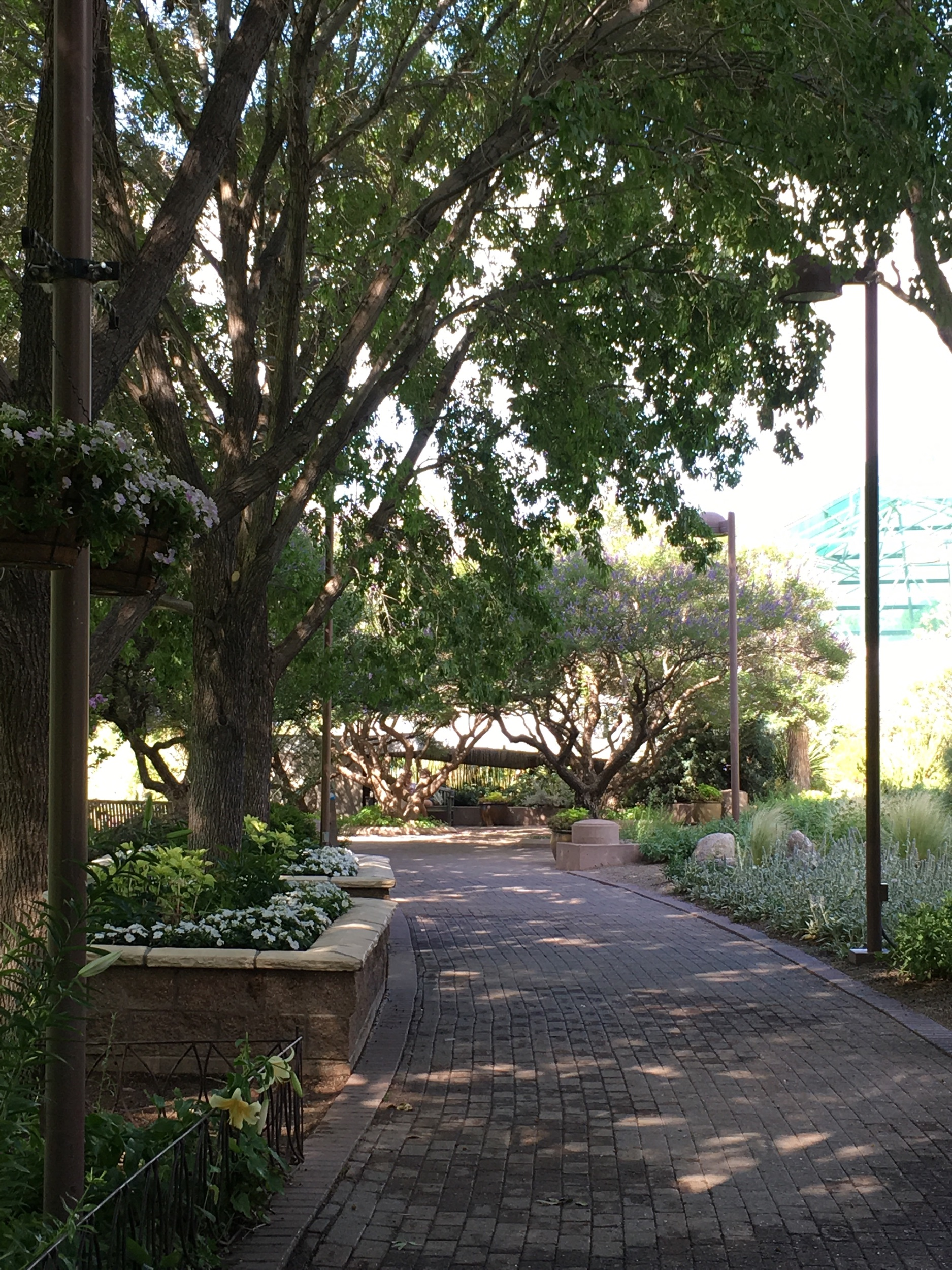 Shady paths offer a cool and tranquil place to walk.
