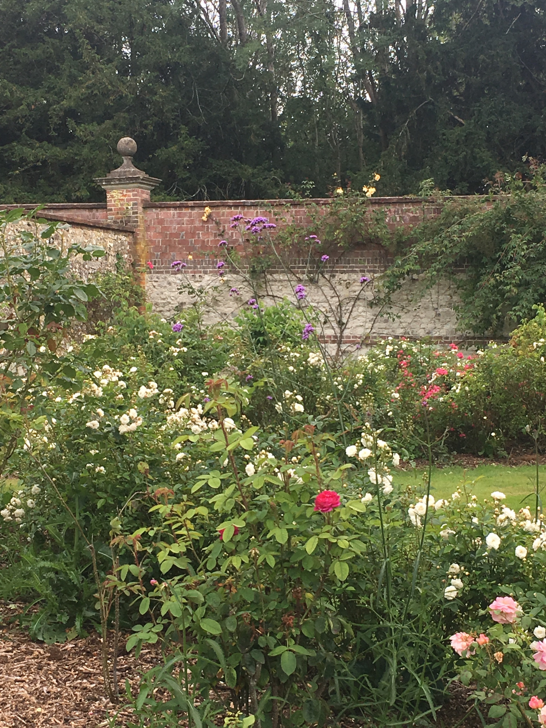 The walled garden at Chawton House