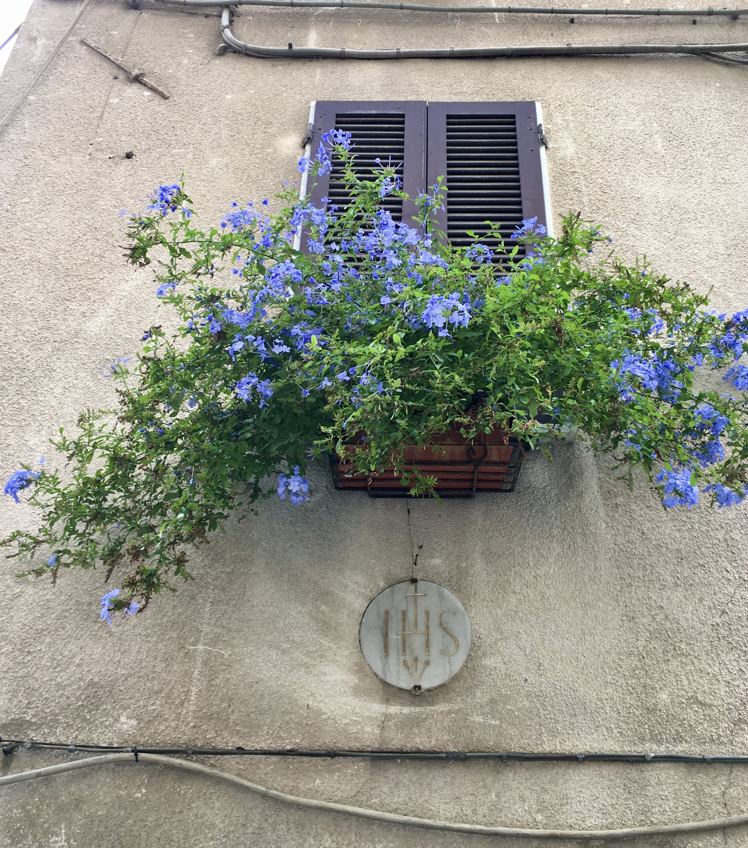 Flowers adorn many of the town's windows.