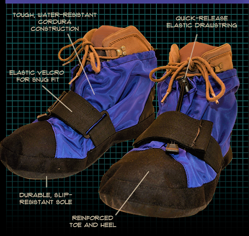 Shoes w grid & labels edited.png