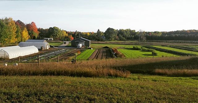 Fall has arrived on the farm and it's so picturesque from this point of view. Lots got accomplished this year and there's plenty more planned for the future! . . #fallonthefarm #october #farminginnorthernmichigan #smallfarm #CSAfarm #michiganfarm #cheboygan #harvestthymefarm