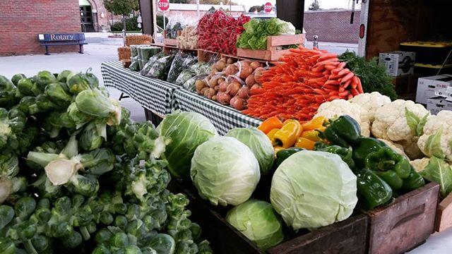 Delicious fall bounty at the market today, including a Brussels sprouts tower! . . #farmersmarket #michiganfarmersmarket #eatlocal #knowyourfarmer #october #smallfarm #michiganfarm #cheboygan #harvestthymefarm