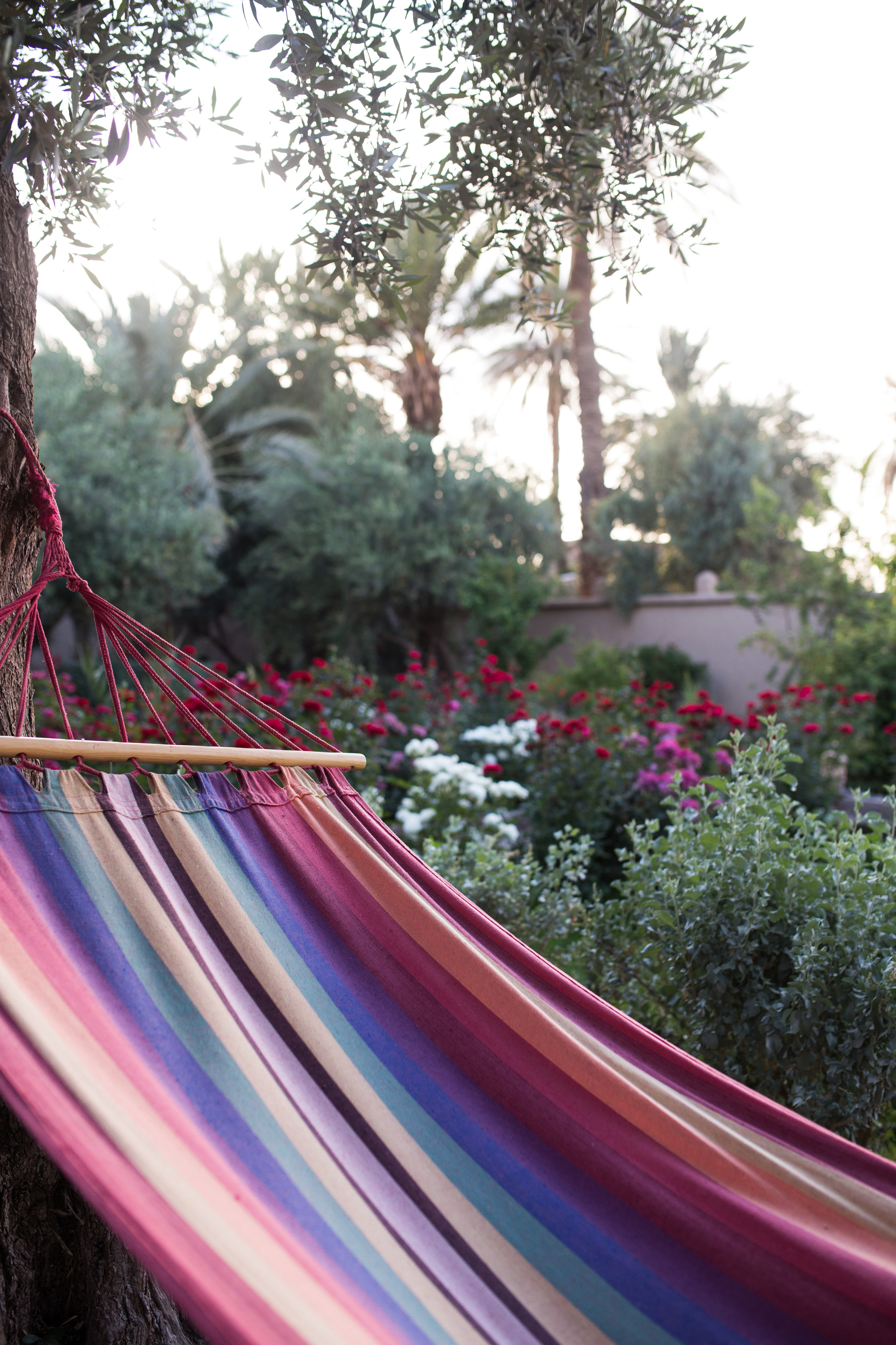 morocco-morocco travel-visit morocco-travel-travel photography-travel photographer-alina mendoza-alina mendoza photography-81.jpg