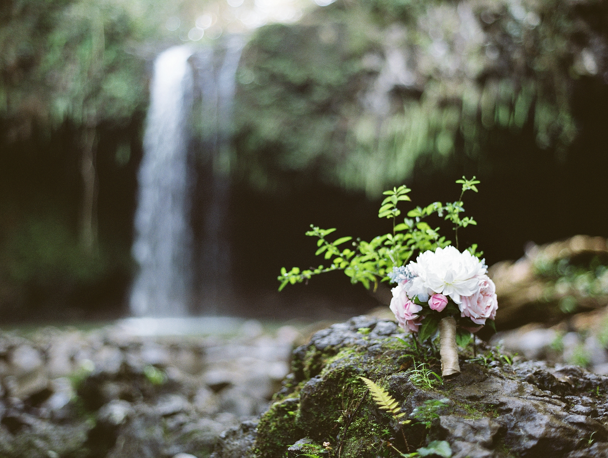 Maui Waterfall Elopement_0004.jpg