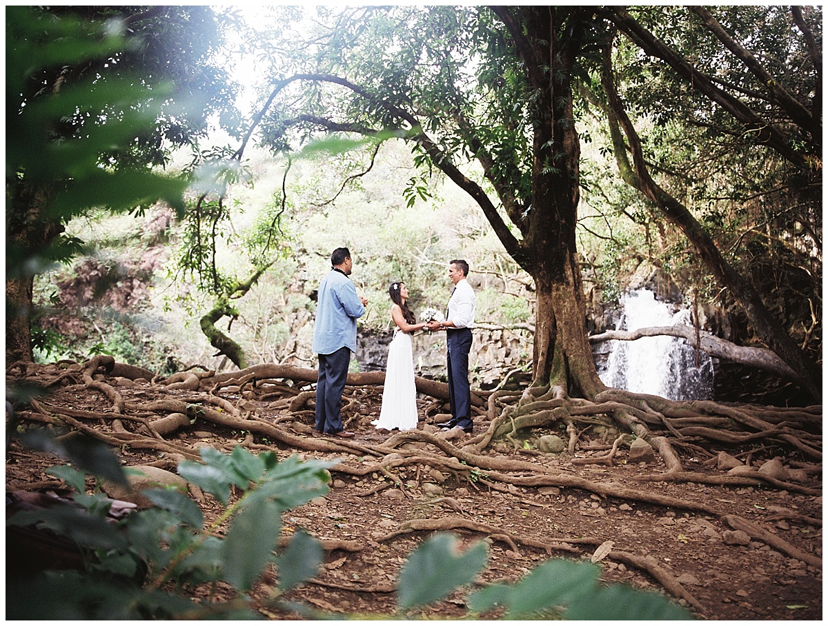 Maui-Waterfall-Wedding009.jpg