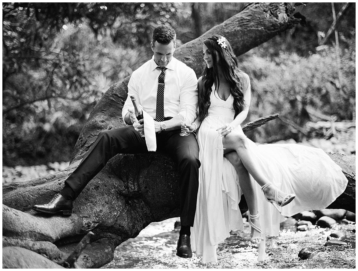 Maui-Waterfall-Wedding025.jpg