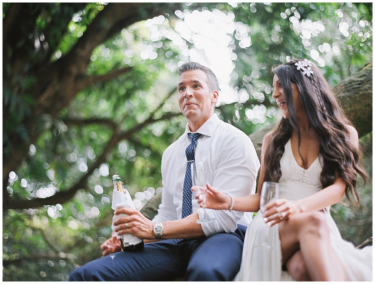 Maui-Waterfall-Wedding028.jpg