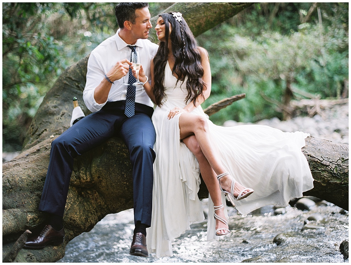 Maui-Waterfall-Wedding032.jpg