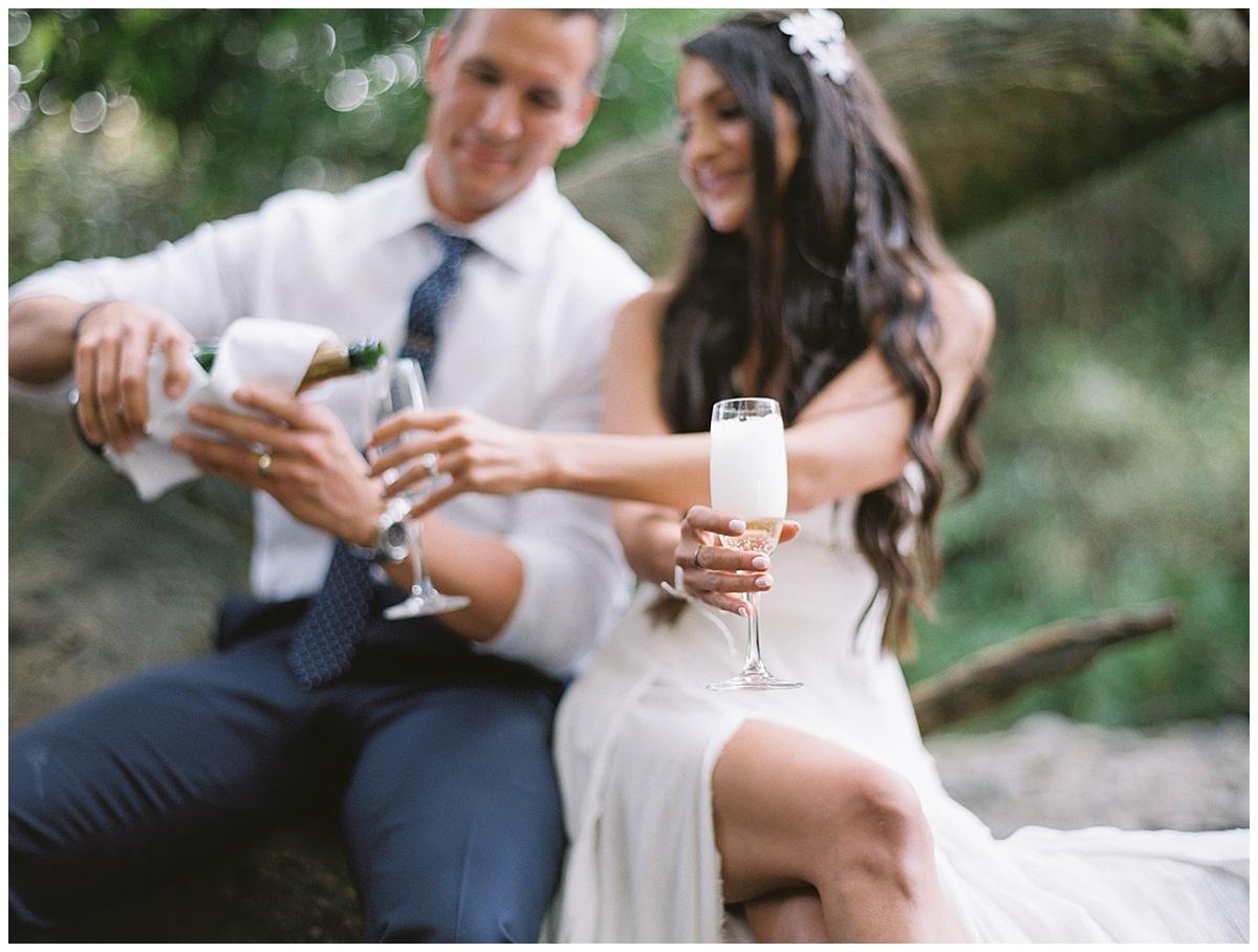 Maui-Waterfall-Wedding034.jpg