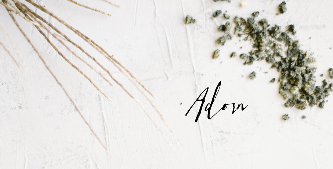 Adorn Company Branding Shoot