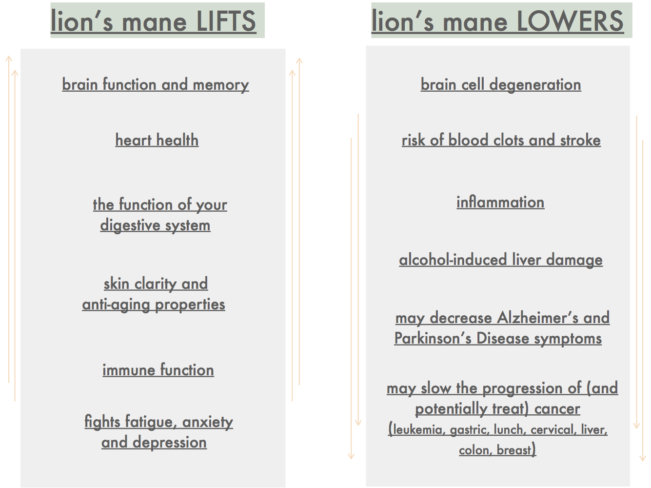 lionsmane_LOWER:LIFT v2.png
