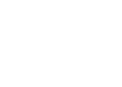 American Eagle Logo_White.png
