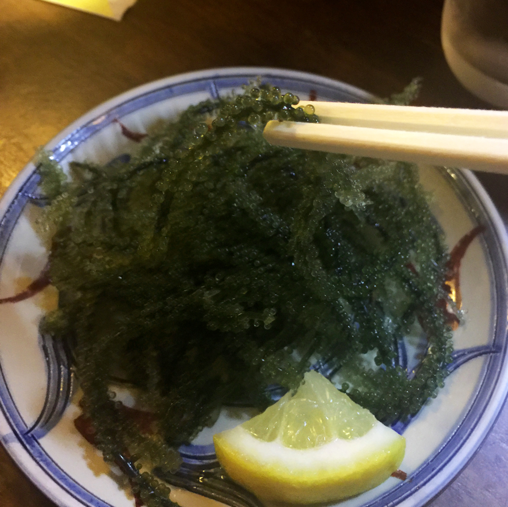 Umibudo - Okinawan Sea Grapes - one of the super foods responsible for Okinawa's long life expectancy.  It's a sea-salty, refreshing seaweed, wish I had the chance to try this in a rice dish!