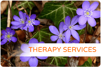Full Circle Therapy Services DMV area